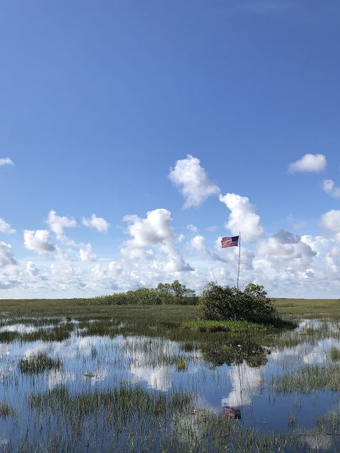 Photo of American flag flying in Everglades National Park.