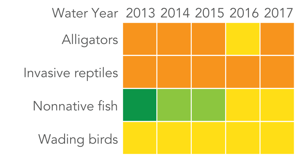 Marix of scores by water year. Alligators scored fair in 2016 but poor in 2013, 2014, 2015 and 2017.  Invasive reptiles scored poor in all years from 2013 to 2017. Nonnative fish scored very good in 2013, good in 2014-2015, and fair in 2016-2017. Wading birds scored fair in every year from 2013-2017.