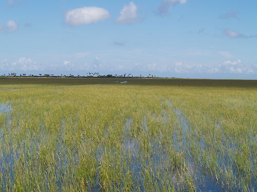 Photo of Lake Okeechobee by SFWMD used with permission