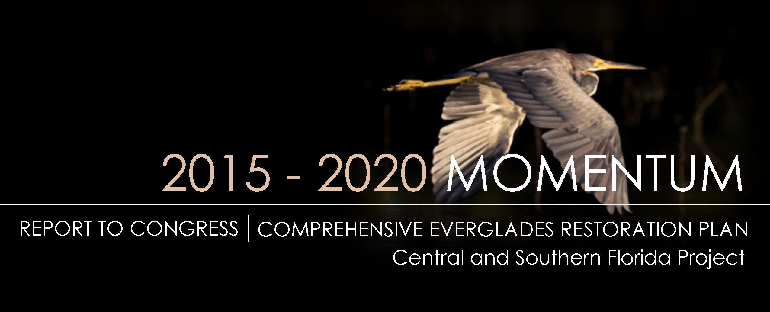 Cover of 2015 - 2020 Momentum Report to Congress - Comprehensive Everglades Restoration Plan - Central and Southern Florida Project