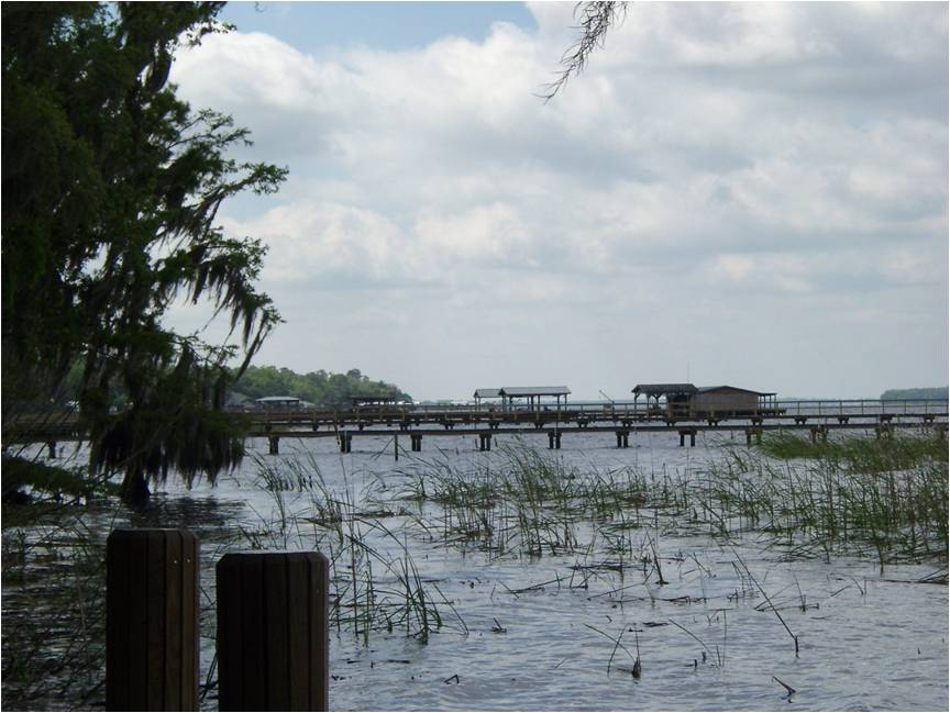 St Johns River, Riverdale 2003